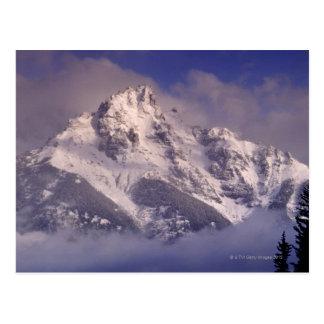 Carte Postale Gamme de montagne de Denali, Alaska