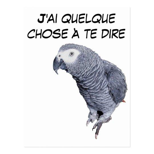 Carte Postale Gamme Perroquet - Gris du Gabon