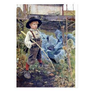 Carte Postale Garçon dans la peinture de jardin de chou