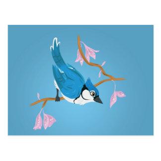 Carte Postale Geai bleu