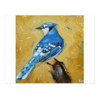 Carte Postale Geai bleu Bird#39