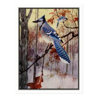 Carte Postale Geai bleu vintage par Robert Bruce Horsfall
