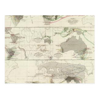 Carte Postale Géographie zoologique