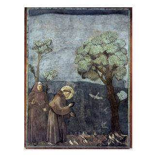 Carte Postale Giotto : St Francis prêchant aux oiseaux