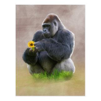 Carte Postale Gorille et marguerite jaune