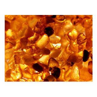 Carte Postale Grains ambres avec l'illumination de contre-jour
