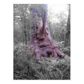 Carte Postale Grand arbre de tintement