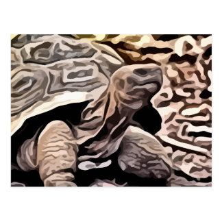 Carte Postale grande peinture brune de tortue