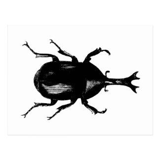 Carte Postale Gravure du bois vintage d'insecte d'insecte de