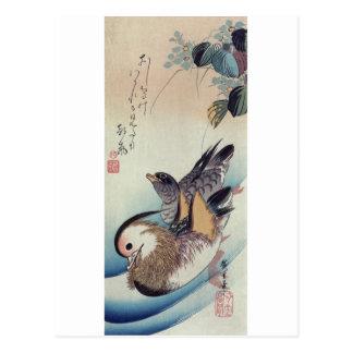 Carte Postale Gravure sur bois en couleur de canards de