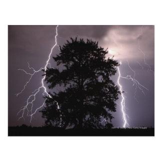 Carte Postale Grèves surprise dans le ciel derrière un arbre