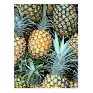 Carte Postale Groupe d'ananas hawaïens tropicaux