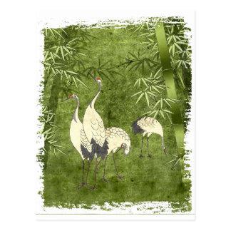 Carte Postale Grues dans la forêt en bambou