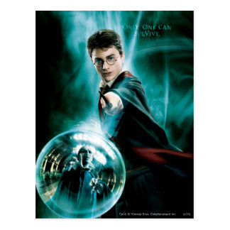 Carte Postale Harry Potter et Voldemort seulement un peuvent
