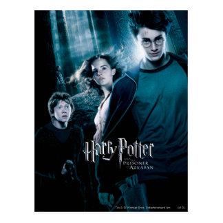 Carte Postale Harry Potter Ron Hermione dans la forêt