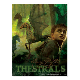 Carte Postale Harry Potter Thestrals