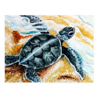 Carte Postale Hatchling de Honu (tortue de mer verte)