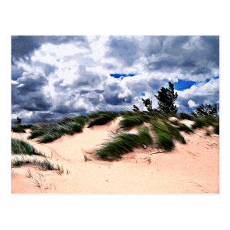 Carte Postale Herbe de dune de plage sablonneuse