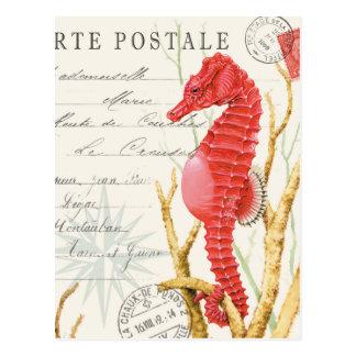 Carte Postale hippocampe vintage moderne