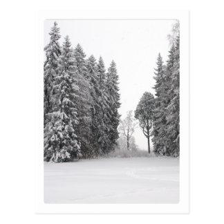 Carte Postale Hiver noir et blanc