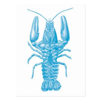 Carte Postale Homard bleu