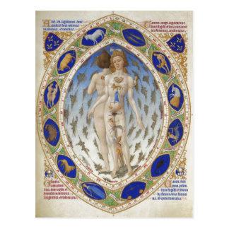 Carte Postale Homme anatomique, Les TR ? richesse Heures du duc