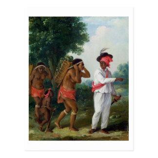 Carte Postale Homme indien occidental de couleur, dirigeant deux
