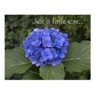 Carte Postale Hortensia assez bleu juste une petite note