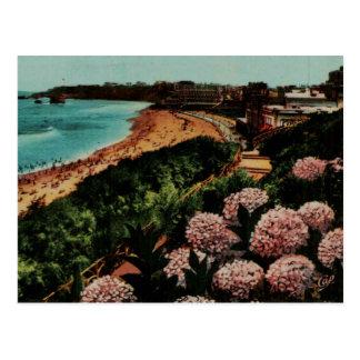Carte Postale Hortensias France de Biarritz