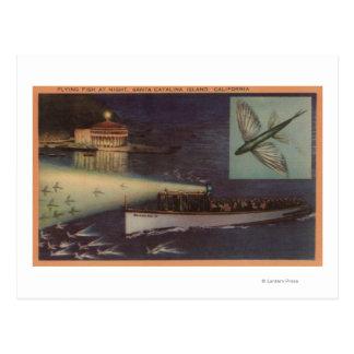 Carte Postale Île de Père Noël Catalina, casino de CA, poisson