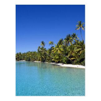Carte Postale Îles Cook rayées par paume de plage 2