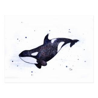 Carte Postale Illustration d'épaulard d'orque