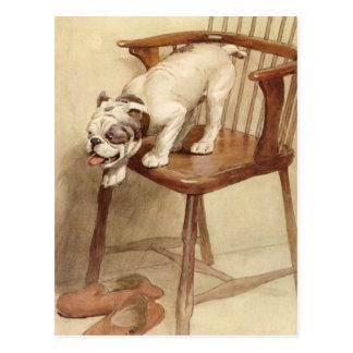 Carte Postale Illustration vintage de chiot de bouledogue
