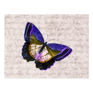 Carte Postale Illustration vintage de papillon de pourpre et