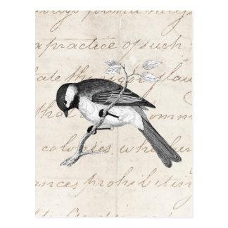 Carte Postale Illustration vintage d'oiseau de chanson - texte