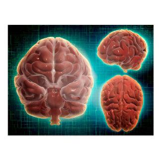 Carte Postale Image conceptuelle de l'esprit humain à différent