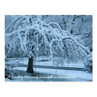 Carte Postale IMG_2425_2, chutes de neige dimanche matin dans