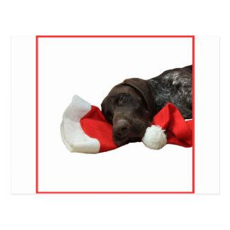 Carte Postale Indicateur grisâtre brillant de Noël