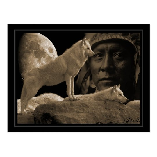 carte postale Indien loup