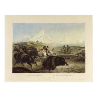 Carte Postale Indiens de Karl Bodmer- chassant le bison