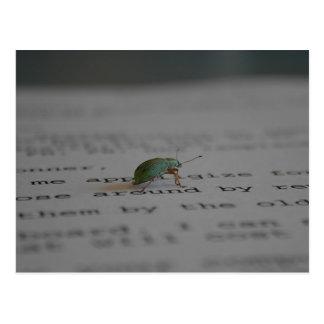 Carte Postale Insecte de bureau