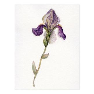 Carte Postale Iris de violette d'aquarelle