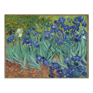 Carte Postale Iris par Van Gogh