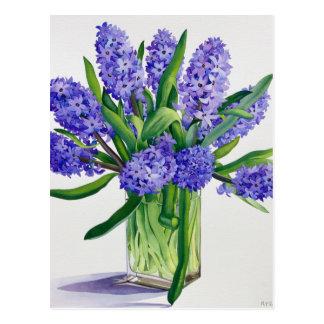Carte Postale Jacinthes bleues