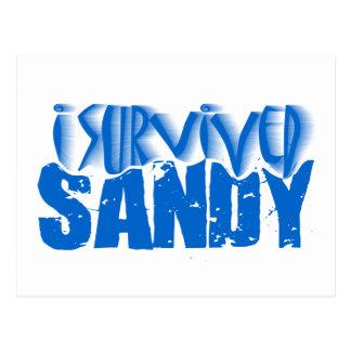 Carte Postale j'ai survécu à SANDY