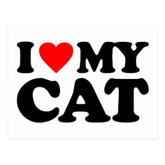 CARTE POSTALE J'AIME MON CAT