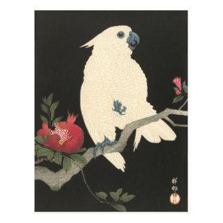 Carte postale JAPONAISE de CACATOÈS