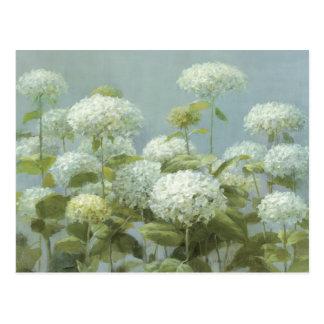 Carte Postale Jardin blanc d'hortensia