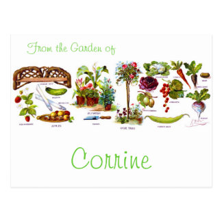 Carte Postale Jardin Botanicals d'été
