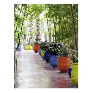 Carte Postale Jardin Majorelle, jardin de Majorelle, maintenant